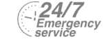 24/7 Emergency Service Pest Control in Totteridge, Whetstone, N20. Call Now! 020 8166 9746